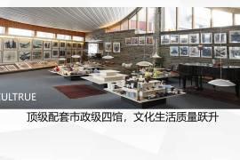 同創華著公館_深圳|首期5萬(減)|鐵路沿線|香港銀行按揭(實景航拍)
